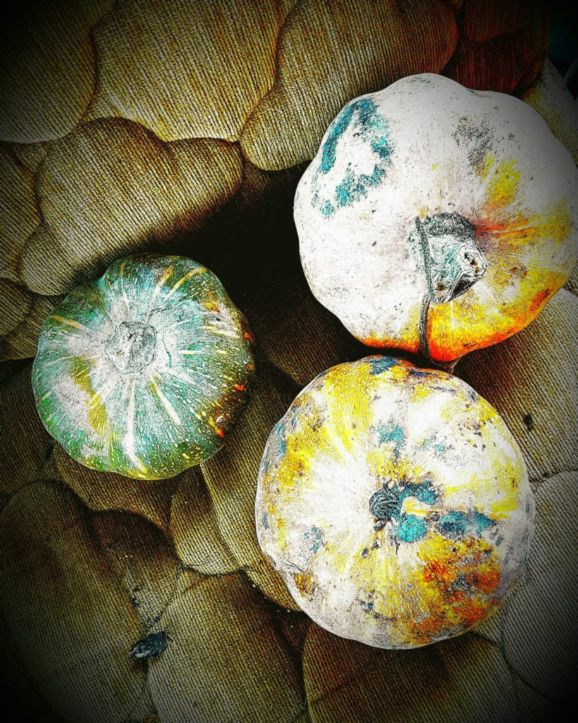 Photograph of 3 round squashes/pumpkins of green/orange/white colors, laid on a cloth