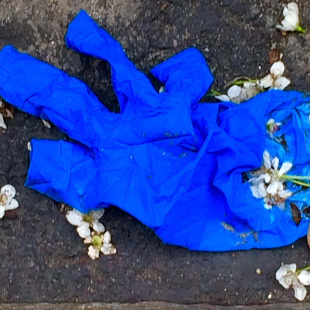 Blue surgical glove on the ground scattered with flower blossom petals