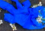 Blue surgical glove on the ground with fallen petals scattered over it.