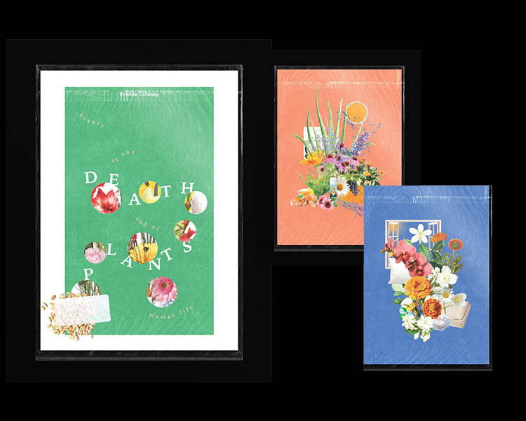 Three greeting card like images.  One large and two smaller overlapped on a black bacground.  All three have flower motifs.  The largest has the Death Plants amongst bubbles filled with flowers.