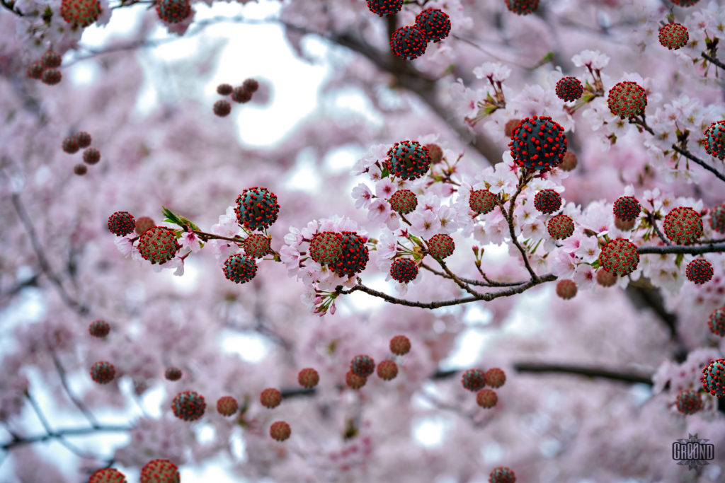 Digital image of a blossomming tree with COVID19 buds