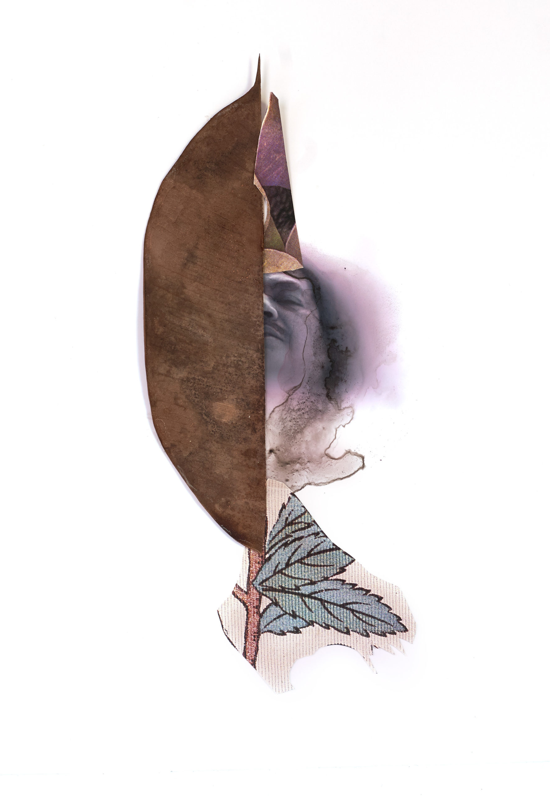 Half of a leaf with a face, drawing of a leaf, and other media next to it.