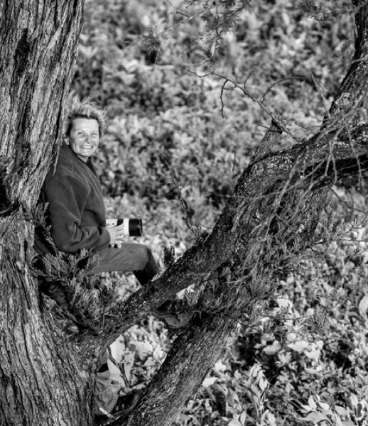 B&W Photograph of Photographer sitting up in a tree with her back against the trunk and her leg braced on a branch.  She is smiling and holding her cameras