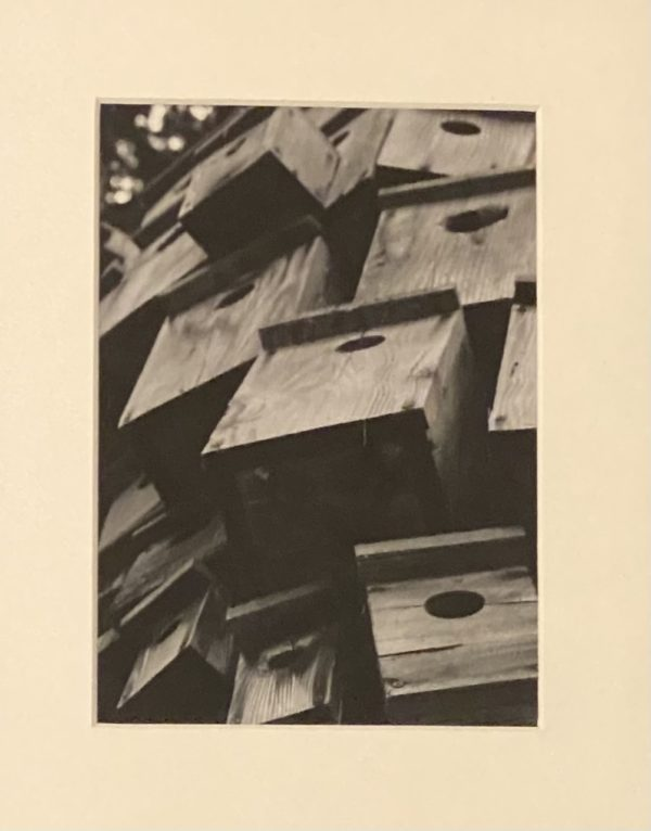 sepia toned photograph of a pile of bird boxes